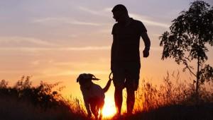 healthier-heart-take-a-walk